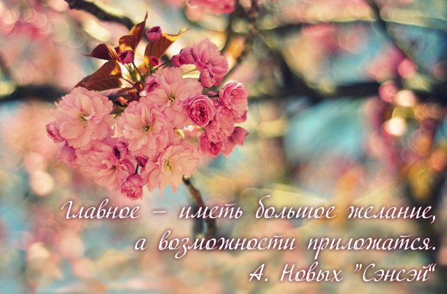Мотиваторы с цитатами из книг Анастасии Новых | sensei.org.ua